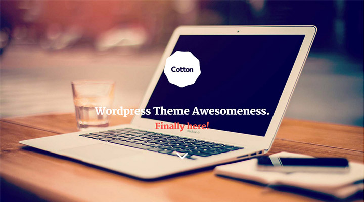 Cotton Wordpress - Boostrap