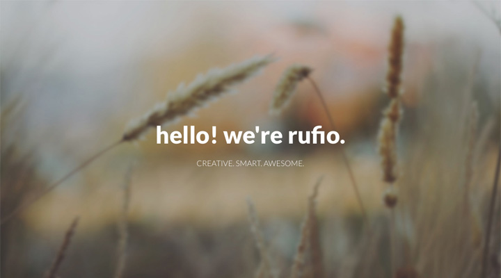 Rufio - 2 in 1 Responsive WordPress Theme