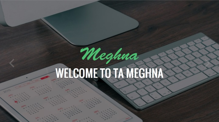 TA Meghna - Free Multi-Purpose WordPress Theme