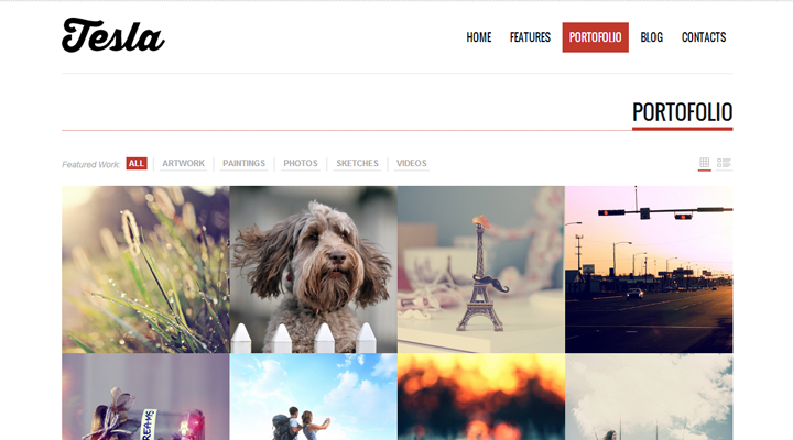 Tesla � Free Premium WordPress Theme